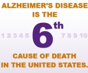 ALZ-side-info-graphic-sixth